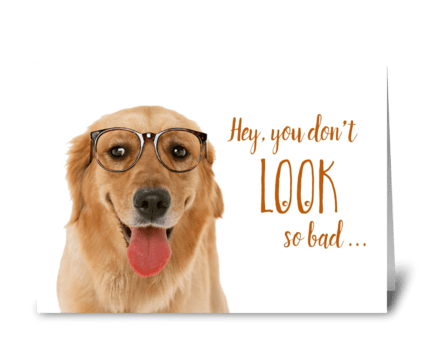 Happy Birthday Old Dog greeting card