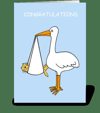 Congratulations new pet cat or kitten. greeting card
