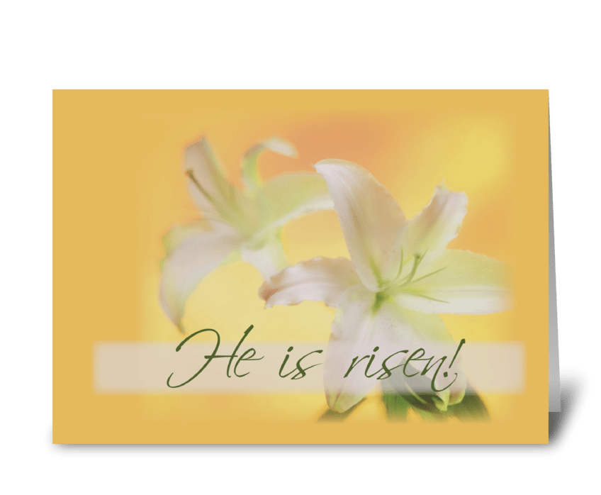 Risen Easter Lilies greeting card