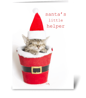 Santa's Little Helper Kitten greeting card