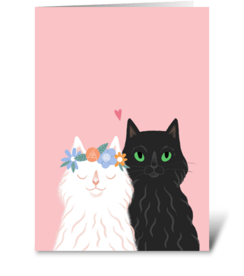 Lovely cats.  greeting card