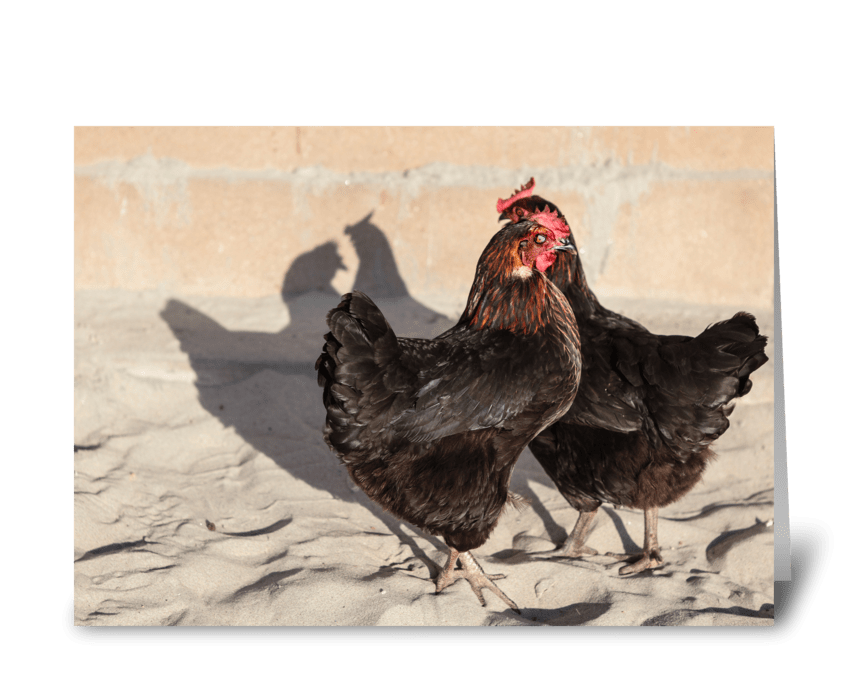Roosters On The Beach greeting card