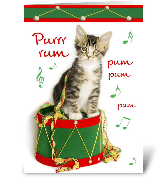 Little Drummer Boy Christmas Kitten greeting card