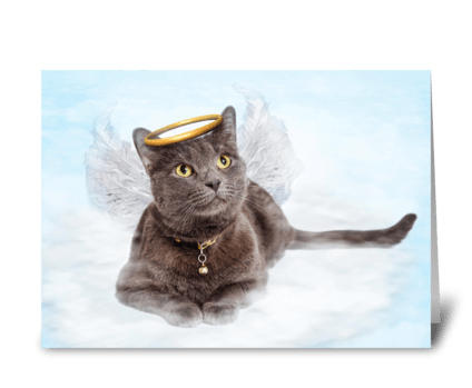 Cat Loss Card greeting card