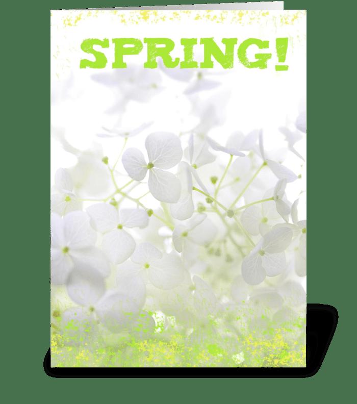 Spring! greeting card
