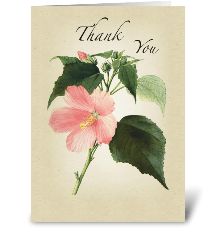Hibiscus Thank You greeting card