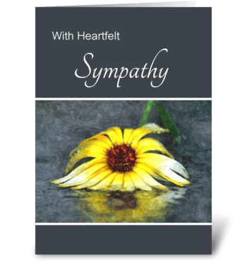 Heartfelt Sympathy Yellow Flower In Rain greeting card