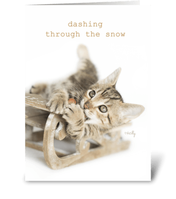 Dashing Through the Snow Christmas Kitty greeting card