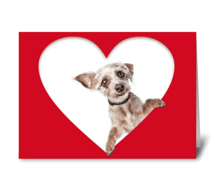 Cute Dog Sending Love Message greeting card