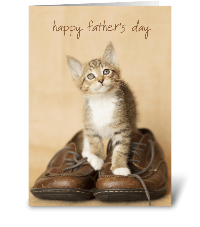 Father's Day Kitten on Dad's Shoes greeting card