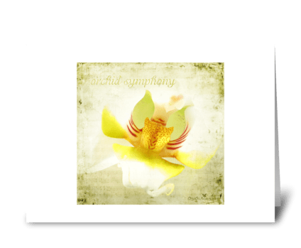 Orchid symphony greeting card