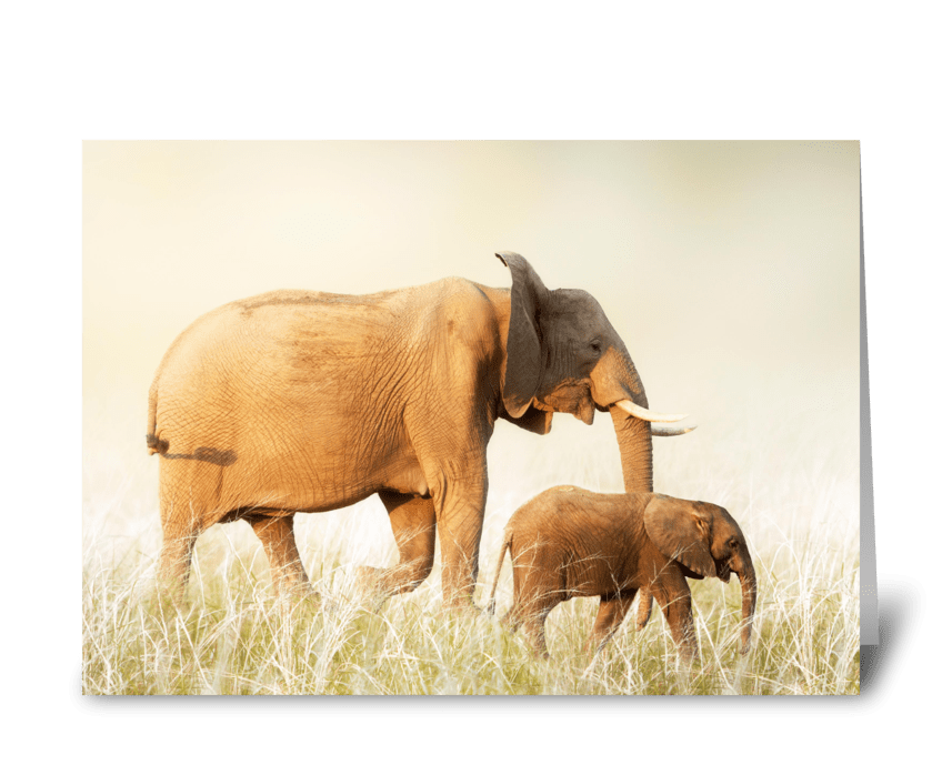Mothers Day Elephant and Baby greeting card