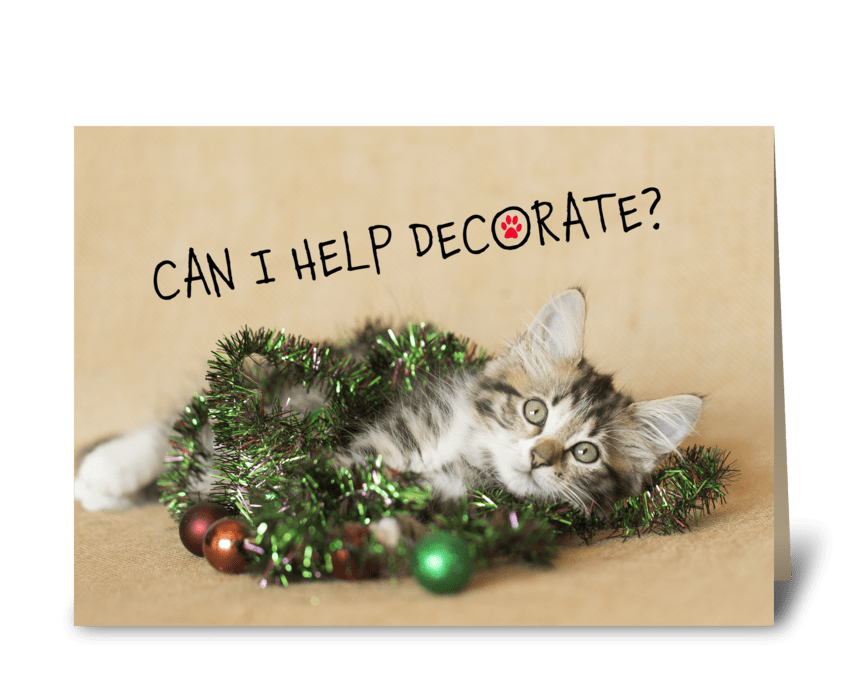 Can I Help Decorate? Christmas Kitty greeting card
