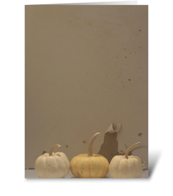 3 Pumpkins greeting card