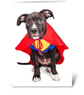 You're My Superhero From Dog greeting card