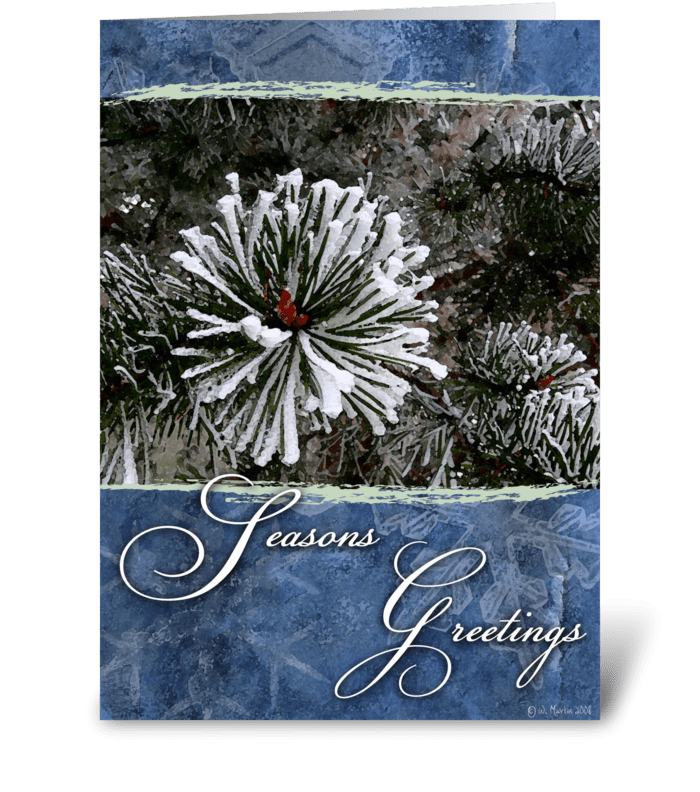 Winter Pine Christmas Card greeting card