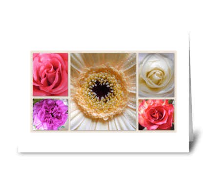 Flowers are gifts of prosperity greeting card