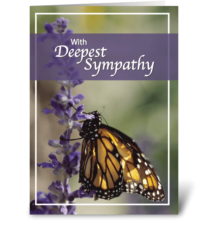 Monarch Butterfly Sympathy greeting card