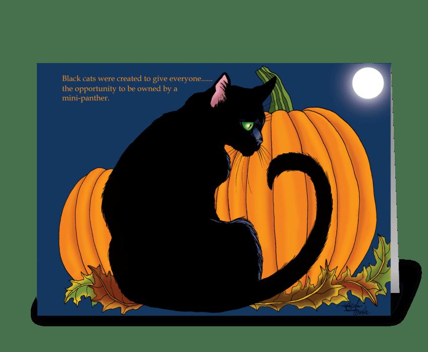 Pumpkin Black Cat greeting card