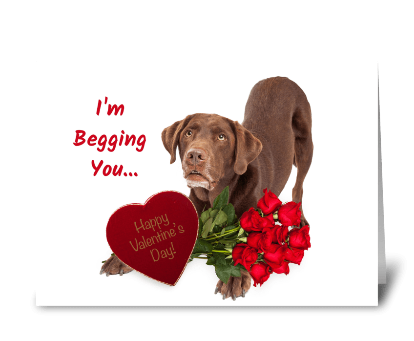 Begging You to Be My Valentine greeting card