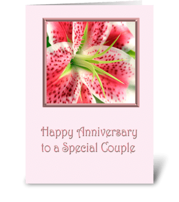 Anniversary Stargazer Lily greeting card