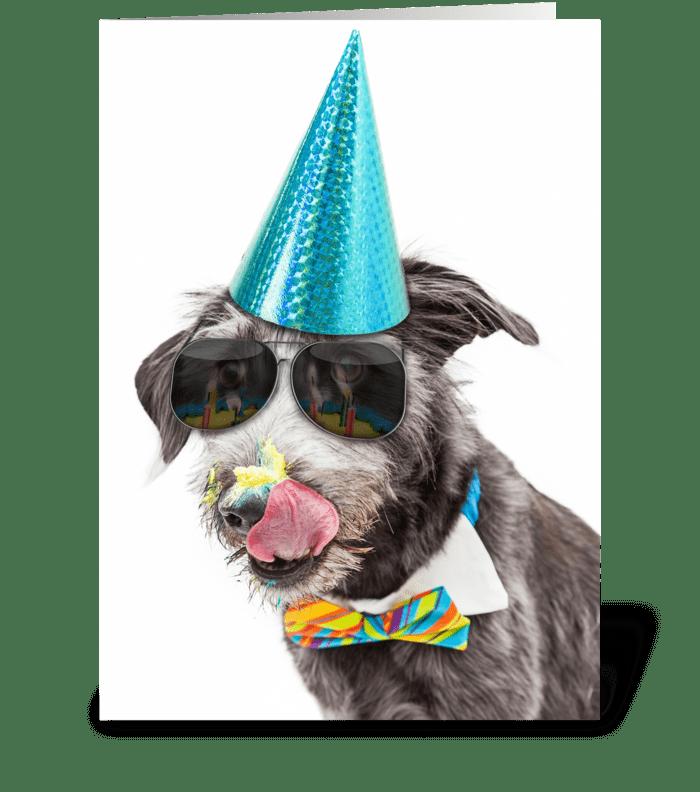 Funny Birthday Dog Celebrating With Cake greeting card