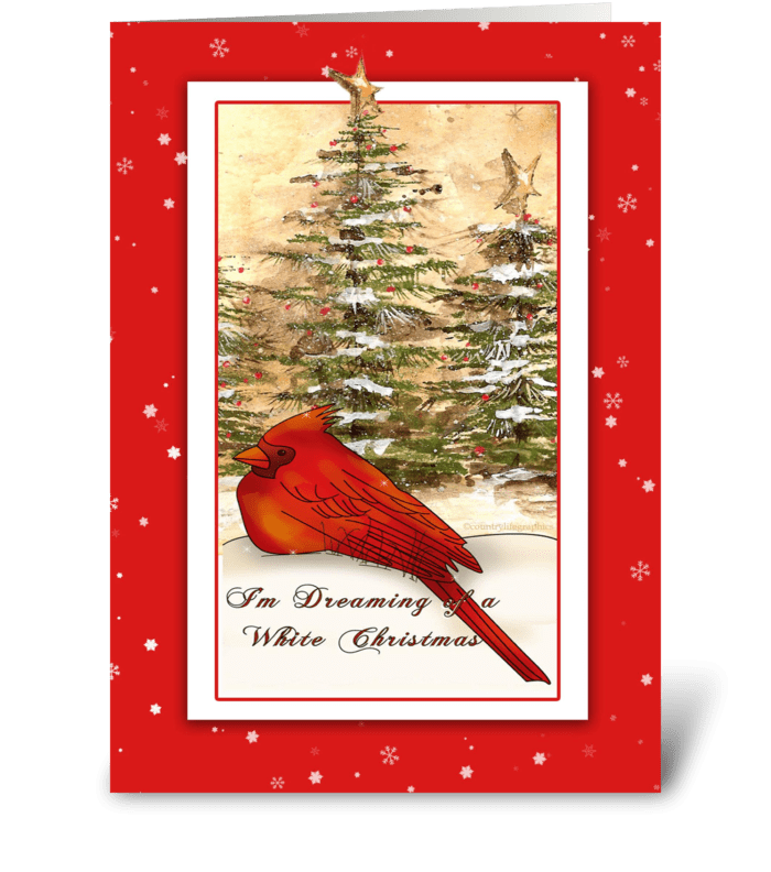 Red Cardinal, White Christmas greeting card