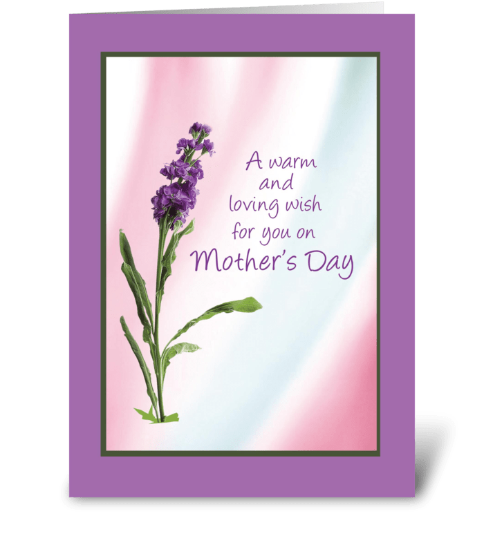 Fine Warm Mothers Day Wish Send This Greeting Card Designed By Funny Birthday Cards Online Fluifree Goldxyz